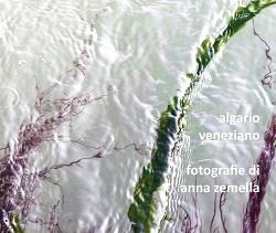 Algario veneziano - catalogo della mostra